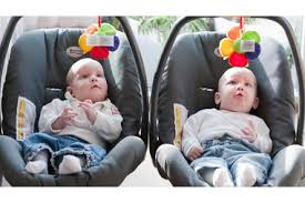 Types Of Twins Chart Types Of Twins Pregnancy Birth And Baby