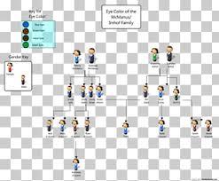 Eye Dominance Chart Pedigree Chart Eye Color Genetics Family Tree Dominance Eye