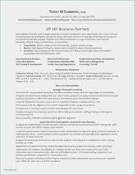 Download 56 Software Developer Resume Template New Free Download