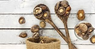 Guide To Medicinal Mushrooms Health Benefits Of Mushrooms