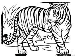 Tiger Coloring Picture Tiger New Coloring Page Printable Daniel