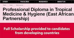 professional diploma full scholarships medicine hygiene for  professional diploma full scholarships medicine hygiene for developing countries in africa 2017