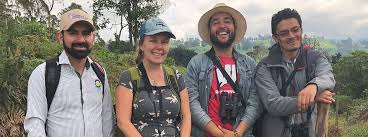 We Can't Lose the Just-Found Antioquia Brushfinch   American Bird  Conservancy