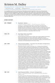 president realtor resume samples realtor resume example