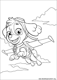 Free Coloring Pages Of Sky From Paw Patrol Paw Patrol Birthday