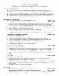 Financial Analyst Resume Financial Analyst Resume Sample Beautiful Junior Financial Analyst 15
