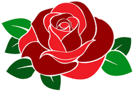 Image result for rose parade 2017