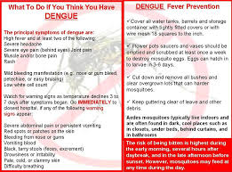 an essay on dengue fever in
