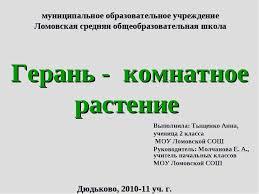 Презентация Герань комнатное растение скачать бесплатно муниципальное образовательное учреждение Ломовская средняя общеобразовательна