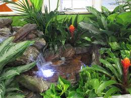 tropical office plants. Waterfall \u0026 Tropical Stream In Corporate Office Building Plants