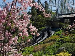 japanese gardens in los angeles and