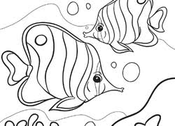 Small Picture Fish Coloring Pages Printables Educationcom