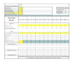 projected profit and loss business plan profit and loss income statement template