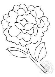 Flowers Templates