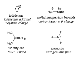 Nucleophilicity Chart Difference Between Electrophile And Nucleophile Difference