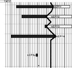 Visualizing Progress Software Project Management