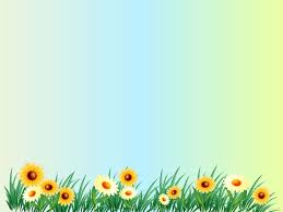 beautiful background pictures for powerpoint. Brilliant Powerpoint Flower Backgrounds Beautiful Powerpoint Free Picture Background Throughout Pictures For E