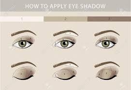 eye makeup types template color beauty vector stock vector 64839291