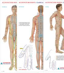 Acupuncture Wall Charts Download Acupuncture Points Chart Meridians Set Of 3 Wall Chart
