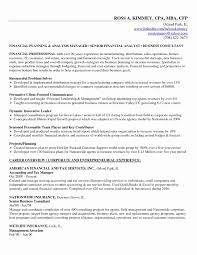 10 Senior Financial Analyst Resume Sample Payment Format