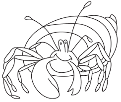 Small Picture Hermit Crab Facts Hermit Crab Habitat Hermit Crab Coloring Page