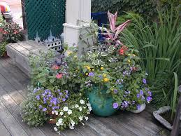 balcony gardens. A Grouping Of Pots With Summer Annualscan Brighten Any Sunny Patio. Balcony Gardens