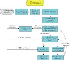 Hypertension Guidelines Chart Diagnosis Of Pulmonary Hypertension European Respiratory