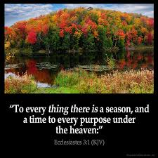 Image result for image for ecclesiastes 3:1