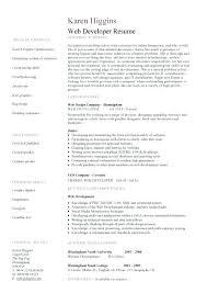 Web Developer Cv Web Designer Resume Template Developer Cv Example Editable