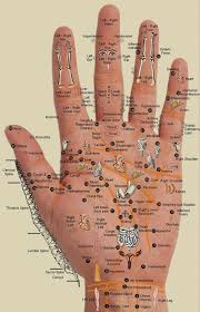 Acupressure Chart Hand Chart To Map Acupressure Points And Organs