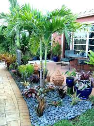 florida garden south garden ideas 5 chic design gardening ideas gardening in south the garden garden
