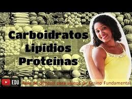 aula carboidratos lipídios e proteínas
