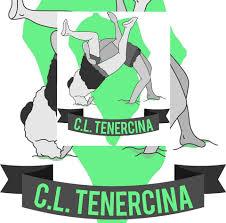 Resultado de imagen de escudo del club de lucha tenercina