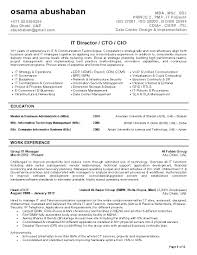 Cio Resume Templates Executive Summary Sample Pdf It Director Cto