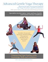 chair yoga for seniors dvd. therapymanual-cover-lg chair yoga for seniors dvd