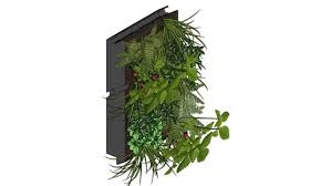 ans living wall exterior planting