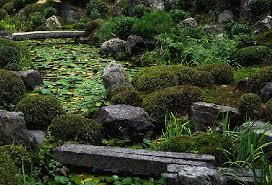 japanese garden at touji kyoto japan