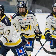 Hv71, often commonly referred to as hv and internationally hv71 jönköping,1 is a swedish professional ice hockey club based in jönköping, playing in the shl. Dam Good Veteran Danielle Stone Has 5 Point Outburst For Hv71 The Ice Garden