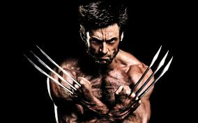 wolverine hd wallpapers wallpaper cave