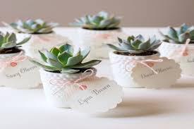 best 25 succulent wedding favors ideas on pinterest succulent