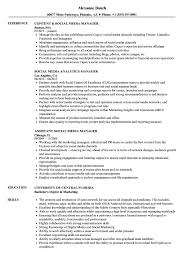 Social Media Manager Resume Sample Media Social Media Manager Resume Samples Velvet Jobs 2
