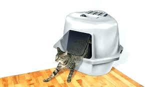 litter box furniture cat enclosed covered. Covered Cat Box Enclosed Litter Amazon . Furniture