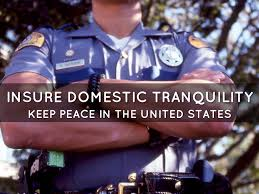 Ensure Domestic Tranquility Preamble By Sophie Grier
