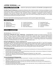 resume attributes resume examples it example payroll professional resume free sample