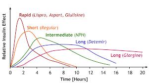 Insulin Comparison Peak And Duration Insulin