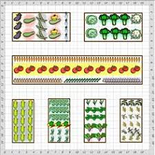 Small Picture Free Vegetable Garden Plans Layout Designs and Planning