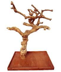 Large Wooden Tree Display Stand Unique Bird Standss Presented By BirdsComfort