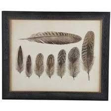 vintage feathers framed wall art on framed feather wall art hobby lobby with vintage feathers framed wall art hobby lobby 979120