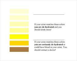 Sample General Color Chart | Kicksneakers.co