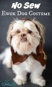 star wars ewok diy dog costume